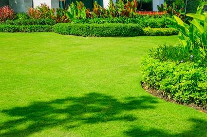 Gepflegter Garten mit Rasen